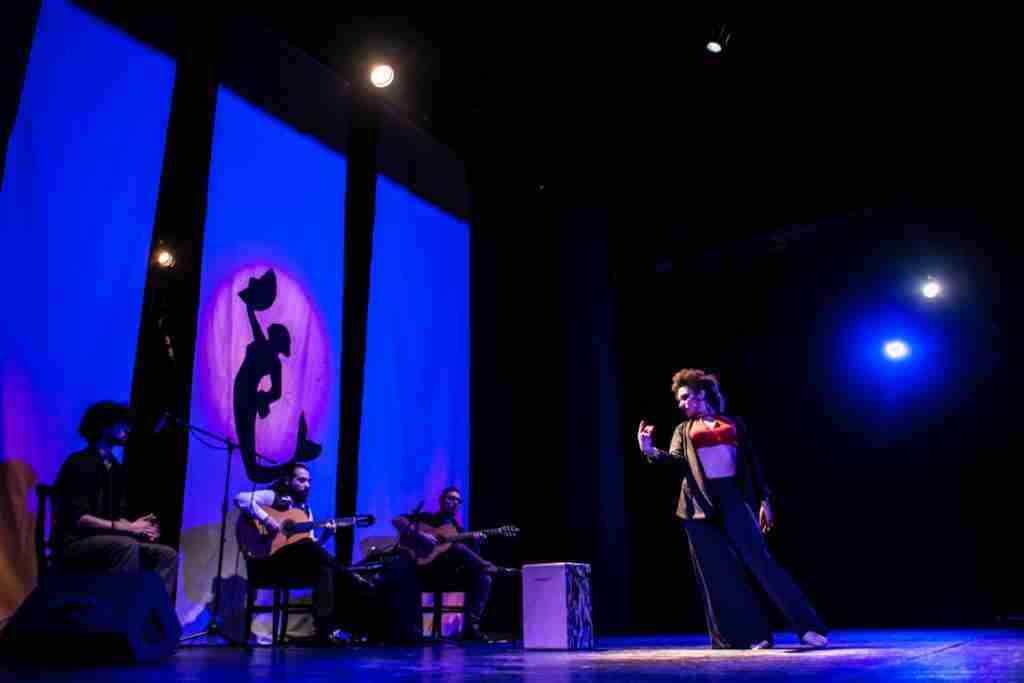 Flamenco Napuleño